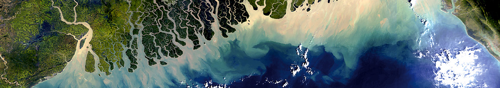 The Ganges River Delta